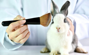More States Joining Global Push to Ban Sales of New Animal-Tested Cosmetics