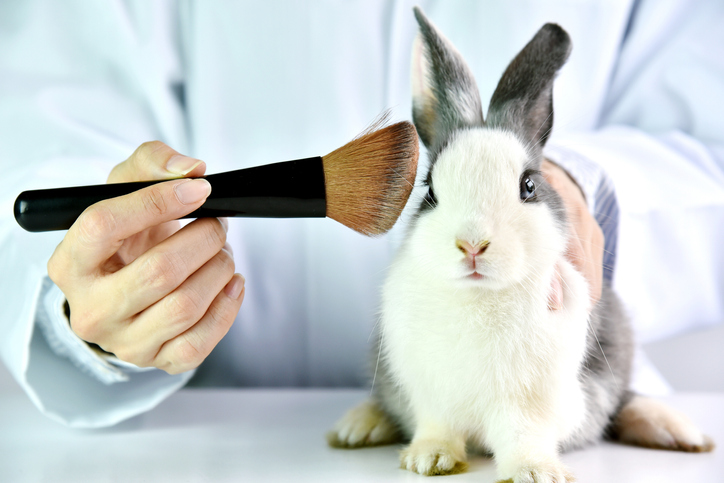 Supporting Cruelty Free